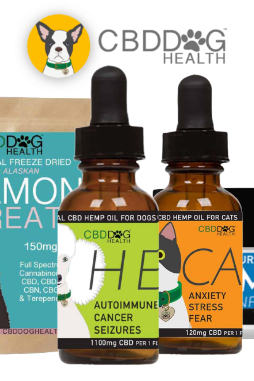 Ease – 550 mg Full Spectrum Hemp Extract (CBD) for Cats with Turmeric And Frankincense