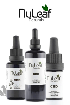 Nuleaf Naturals - 300mg Full Spectrum Hemp CBD Oil, 5mL (60mg/mL)