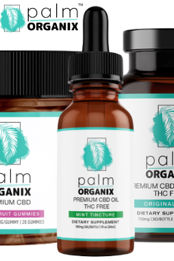 Palm Organix - CBD Energy Drink | 1 Box (5 drinks)