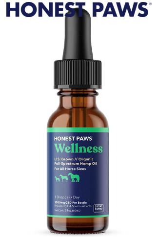 Purity Organic Full Spectrum Hemp Oil For Horses
