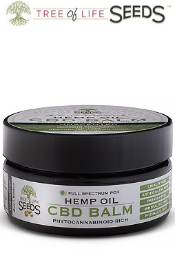 undefined - Unscented CBD Oil Balm 2oz and 0.5oz