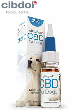 undefined - CBD Oil 2% For Dogs