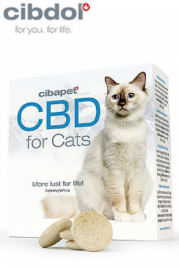 undefined - CBD Pastilles For Cats