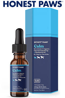CBD Oil for Dogs - Calm 125mg