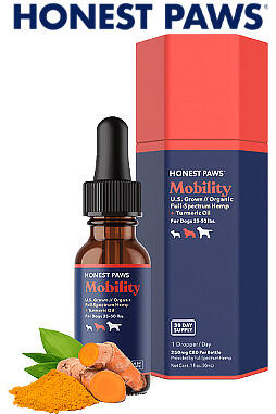 CBD Oil for Dogs - Mobility 250mg