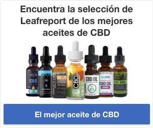 La selección de Leafreport para los mejores aceites de CBD