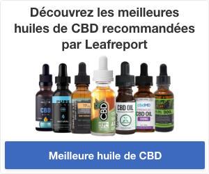 Les sélections Leafreport pour la meilleure huile de CBD