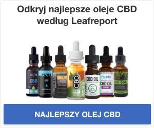 Najlepsze oleje CBD według Leafreport