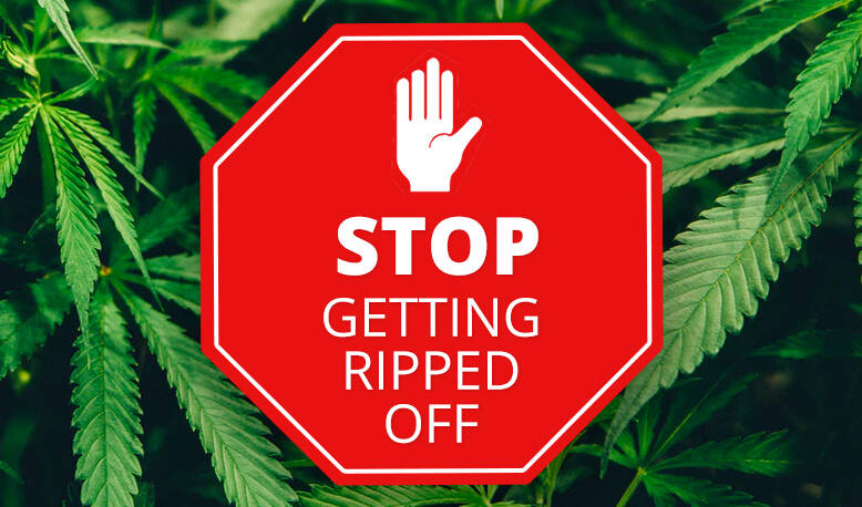 How to Avoid Getting Ripped Off When Buying CBD Products