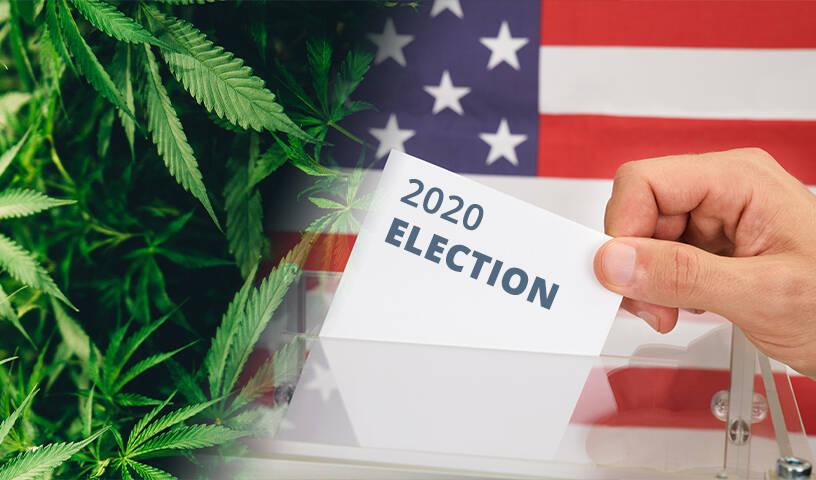 Cannabis 2020 election