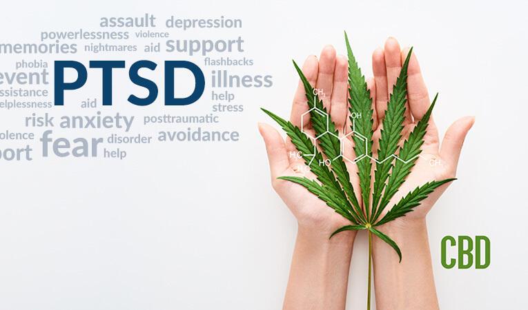 PTSD and CBD