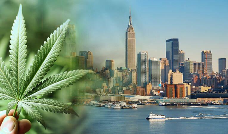 Cannabis Ney York