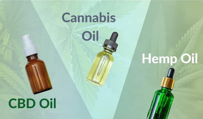 CBD Oil vs Hemp Oil vs Cannabis Oil