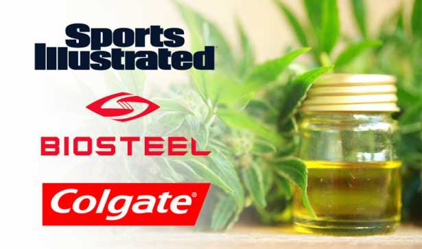 Colgate Sports Illustrated Biosteel Nutrition Enter The Cbd Market Leafreport